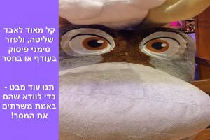 pic - 4